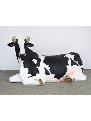 Cow Laying Down (with or without Horns)