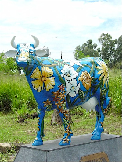 Hawaiian/ Flower Cow