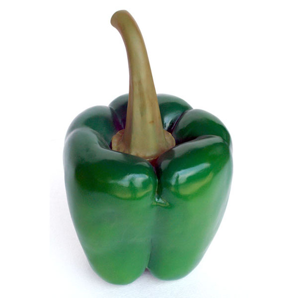 Bell Pepper ( Green )