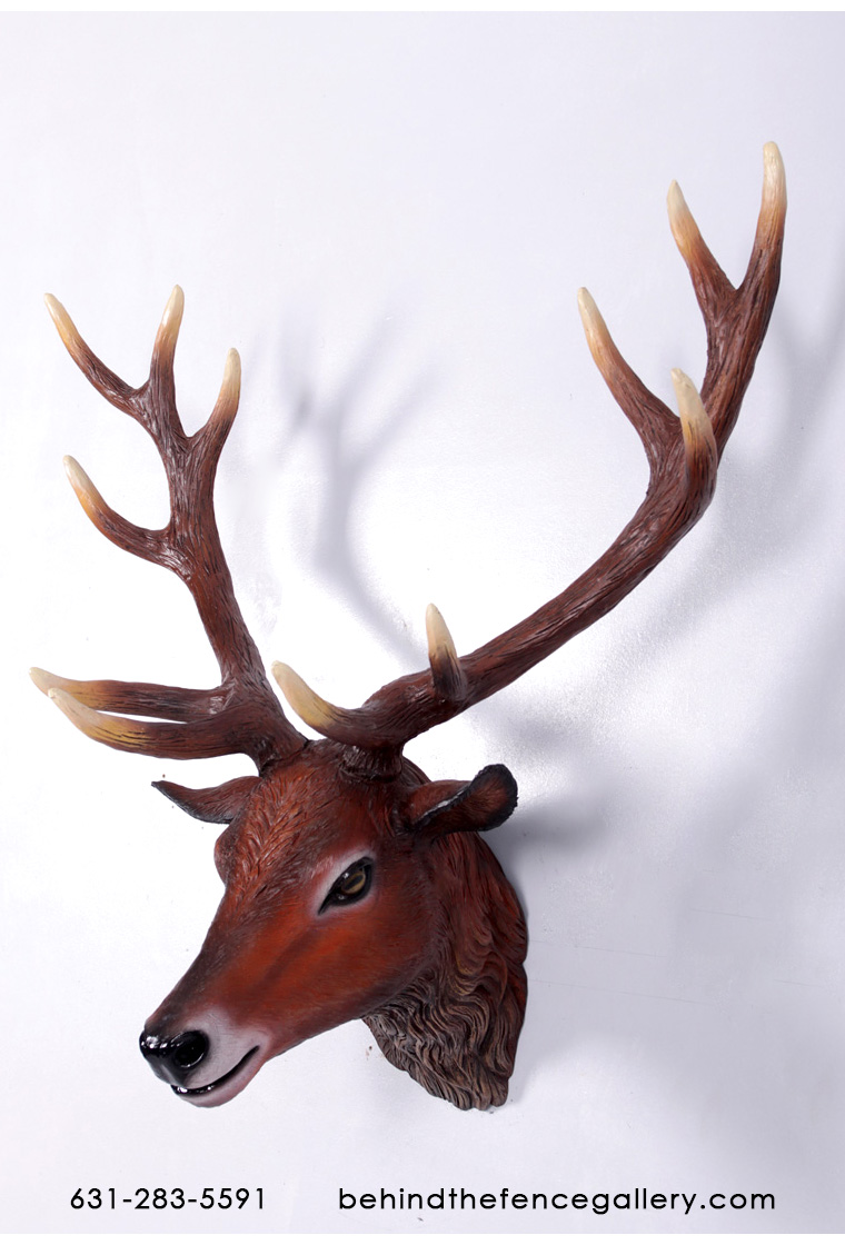 Red Deer Stag Head