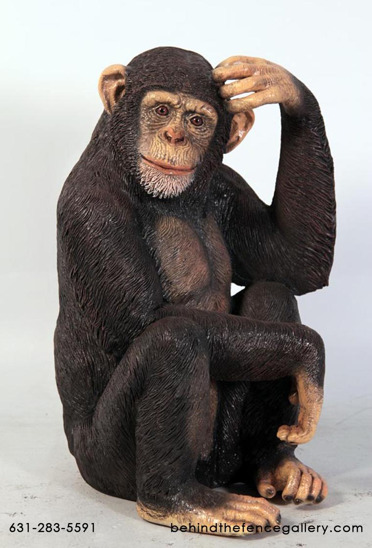 Chimpanzee Stock Photo - Image: 48957299  |Chimp Sitting